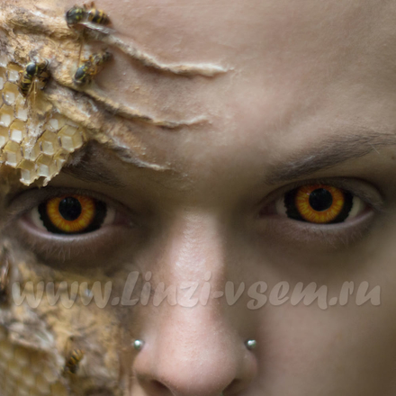 Склеральные линзы Lensmam Evil Ed Фото 4